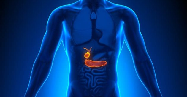 أعراض المرارة الخفيفة أعراض التهاب المرارة البسيط معلومة