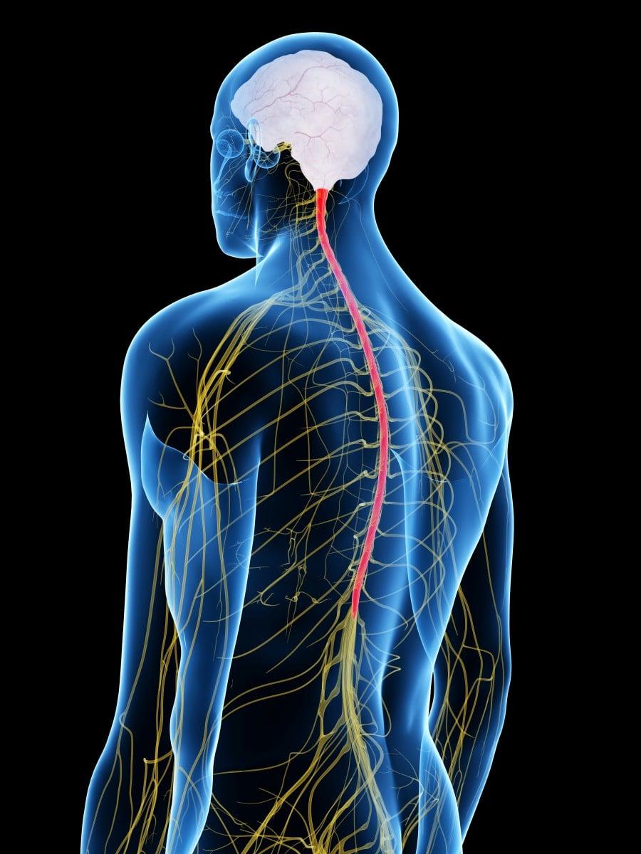 أدوية علاج التهاب الأعصاب في الرأس علاج التهاب أعصاب الساقين معلومة