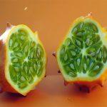 فوائد فاكهة الكيوانو