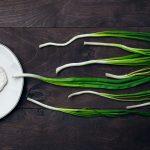 زيادة التبويض عند المرأة بالأعشاب