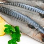 فوائد سمك باغة