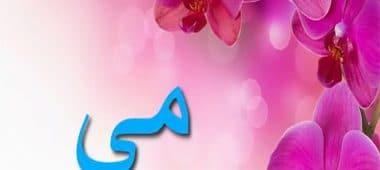 ما معنى اسم مي في الاسلام واللغة العربية