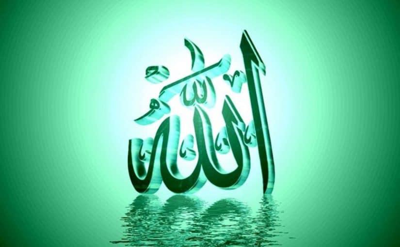 معنى اسم تيم الله في اللغة العربية
