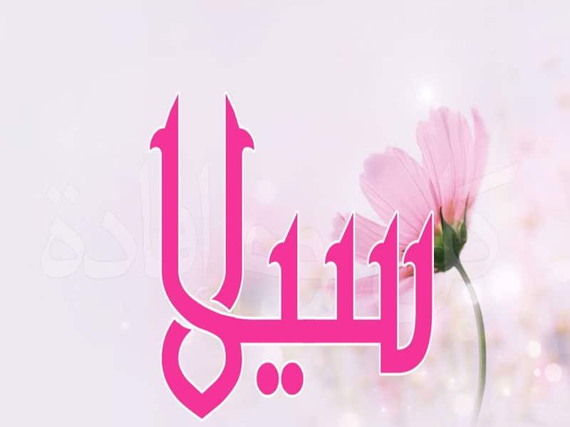 معنى اسم سيلا في القرآن الكريم وفي المعجم معلومة
