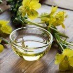 زهرة الربيع المسائية تجربتي .. تعرفي على فوائدها لحل المشكلات المتعددة