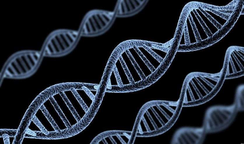 علاج خلل الكروموسومات بالأعشاب