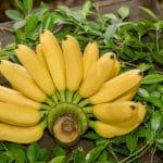 كيفية استخدام قشر الموز للبشرة بكل أنواعها
