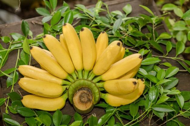 كيفية استخدام قشر الموز للبشرة