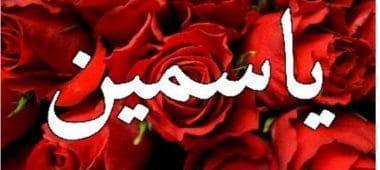معنى اسم ياسمين في القرآن وصفات شخصيتها حسب علم النفس