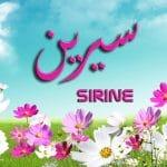 معنى اسم سيرين في الاسلام وصفات حاملة الاسم في علم النفس