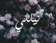 معنى اسم نيللى في اللغة العربية وصفات شخصية حاملة الاسم
