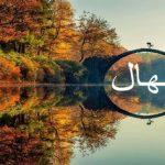 معنى اسم نهال في الإسلام