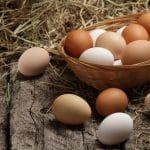 رؤية البيض في المنام وجمعه وشراؤه للمتزوج والعزباء والمتزوجة