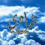 معنى اسم شادي في الإسلام وحسب علم النفس